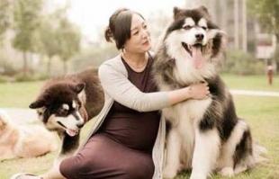怀孕能养宠物吗?孕妇养宠物会有哪些危害?