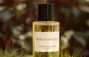 宝藏香水推荐:五款不易撞香的冷门香水,非常好闻!